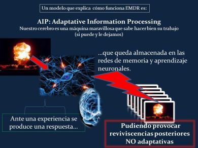 AIP_+Adaptative+Information+Processing